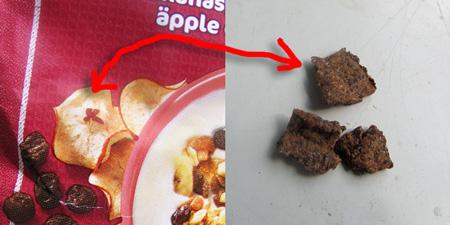 Äpple vs bark